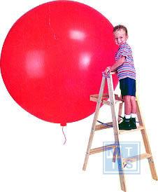 R200 Bedrukte reuzenballon: 2 kleuren / 1 zijde, 65cm doorsnede